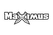 Клиент компании ЭлВент Maximus